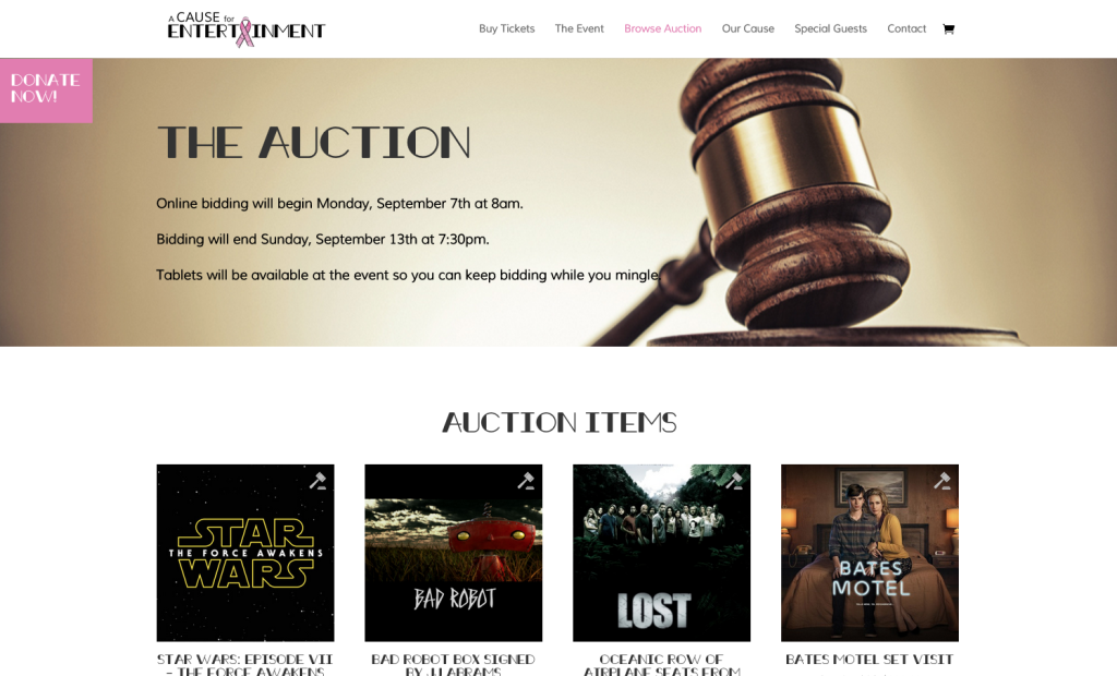 A Cause for Entertainment's Fundraising Website