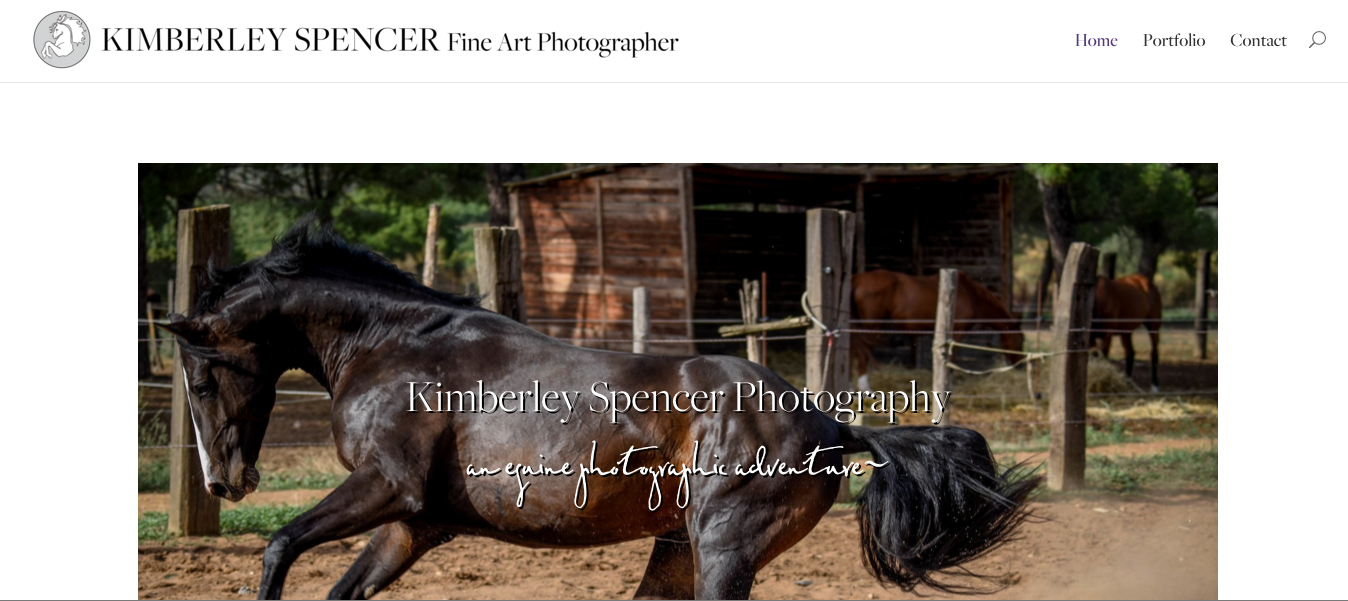 Fine Art Equine Photography – A Portfolio Website