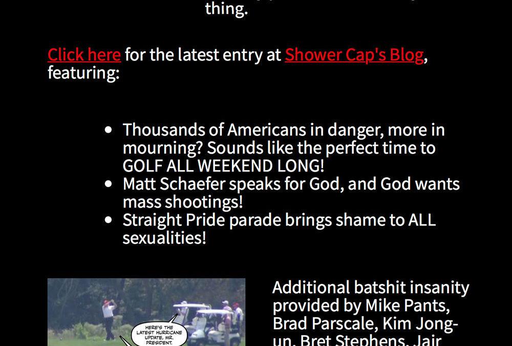 Political Blog Newsletter